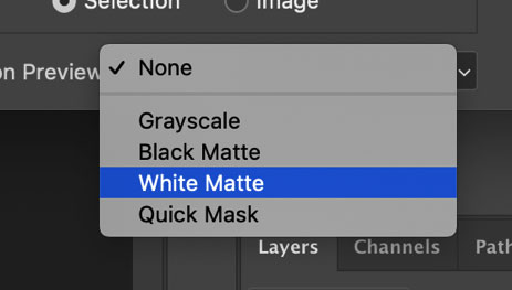 Photoshop select white matte option