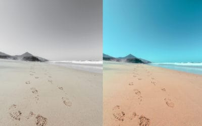 How to Replace a Color in Photoshop